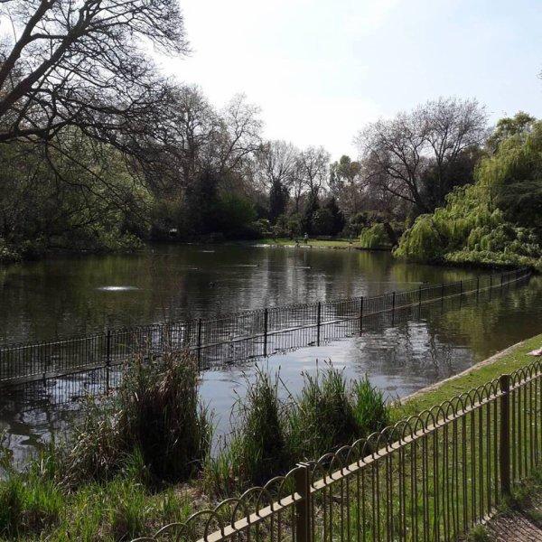 Trop beaux les parcs de Londres dans lesquels il fait bon se perdre :)