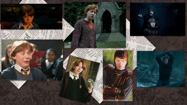 Evolution de Ronald Weasley