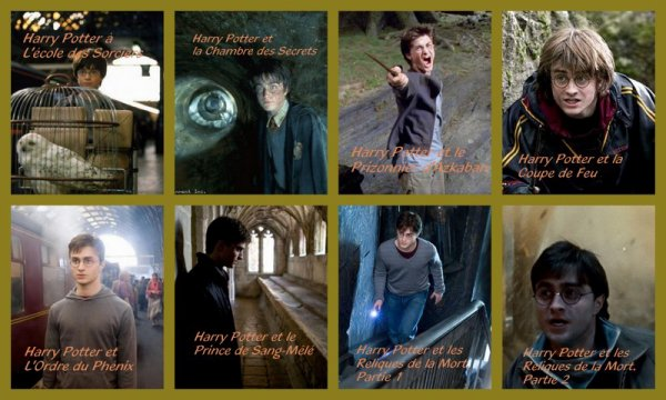 Evolution d'Harry Potter