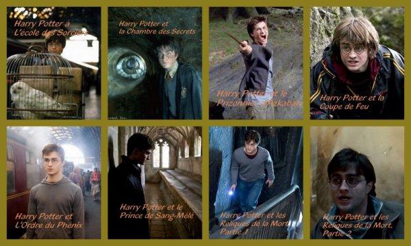 Evolution d'Harry Potter
