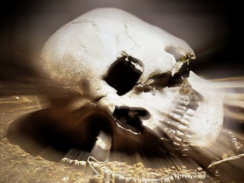 my fucking best skull