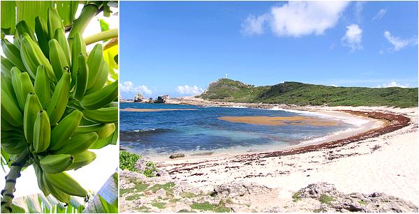 Antilles, Guadeloupe & Martinique