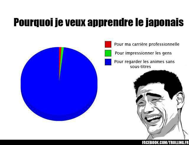 Et vous ? Pourquoi vous apprenez le japonais ? =3