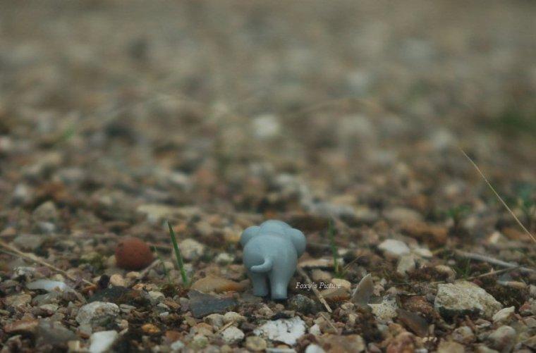 Remixe : Le petit jouet éléphant.