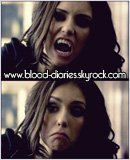 Photo de Blood-Diaries