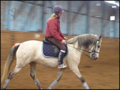 Cavalo, Minha Vida, Minha Razao De Ser. ♥