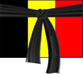 Belgique en deuil