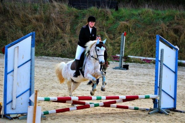 Concours Equitation ??