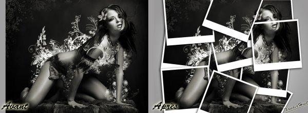 Tutoriel Créer Un Effet Photo Polaroid Dynamique Avec Photoshop CS6 Extended 