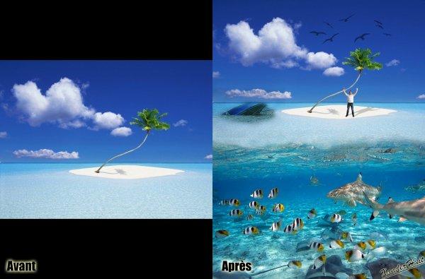Tutoriel Entre Terre Et Eau Avec Photoshop CS6 Extended 