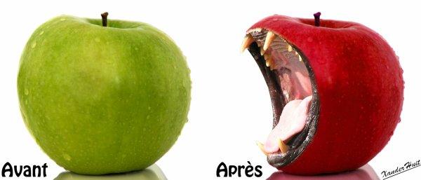 Tutoriel Croquer La Pomme Avec Photoshop CS6 Extended 
