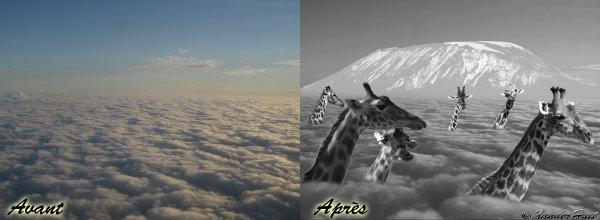 Tutoriel Par Dessus Les Nuages Avec Photoshop CS6 Extended 