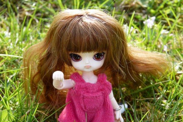 Des nouvelles de Kurama. Ou plutôt de ses dolls...