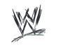 - Les Champions Actuels à la WWE -