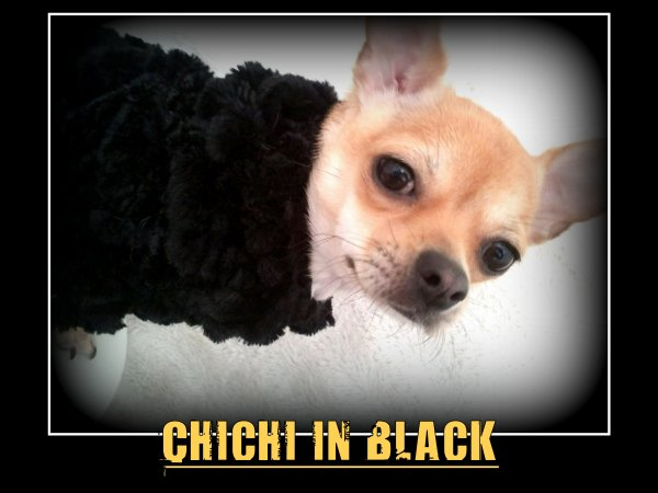 CHICHI IN BLACK