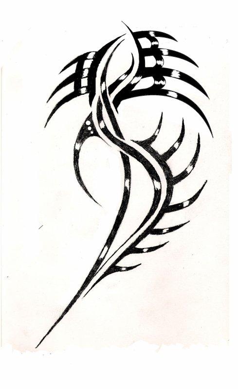 un p'tit dessin pour un lien