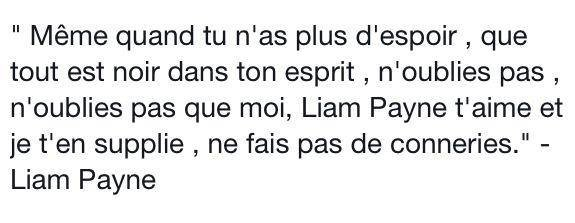 #Liam Payne  des one direction.