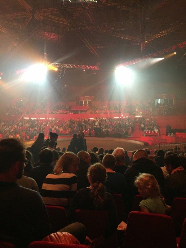En direct du 13 eme festival du cirque de grenoble