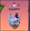 Takara & Ayuma