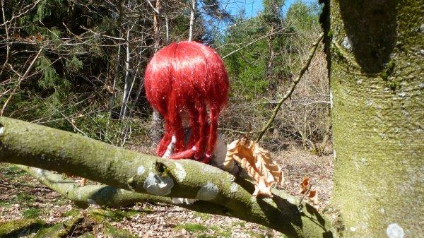 Dans les bois (1)
