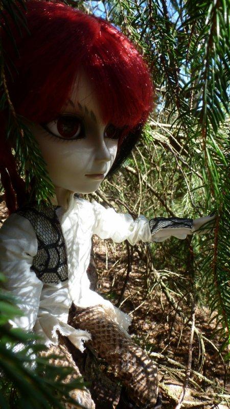 Dans les bois (2)