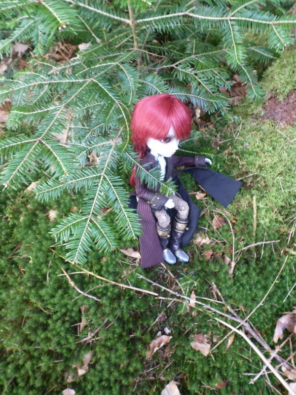 Dans les bois (avec Mitsuki) (2)