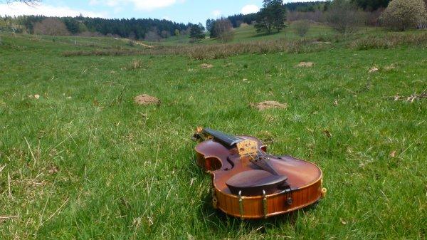 Instrument de musique (2)