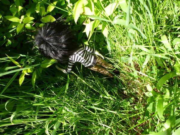 Dans l'herbe après la custo! (4)