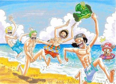 zoro qui cour nu et les autre mort de rire surtout sanji