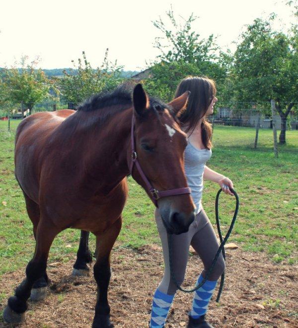"""""""On ne peut pas prétendre maîtriser son cheval tant qu'on ne se maîtrise pas soi-même."""""""