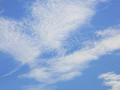 """""""Maman, pourquoi les nuages vont dans un sens et nous dans un autre?"""""""