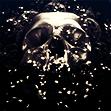 Photo de dementorskiss