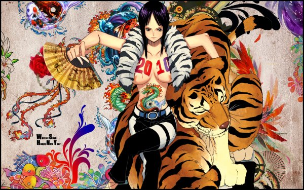 les fille de one piece