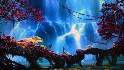 image de avatar