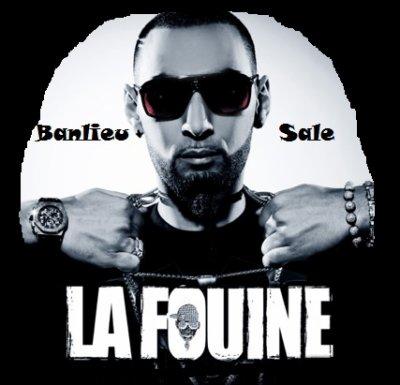 Présentation De La Fouine.