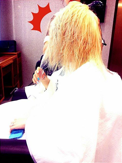 [News du 13.11.12] : Mise à jour du me2day