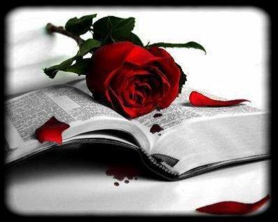 l amour ses quant un grands livre ouvert
