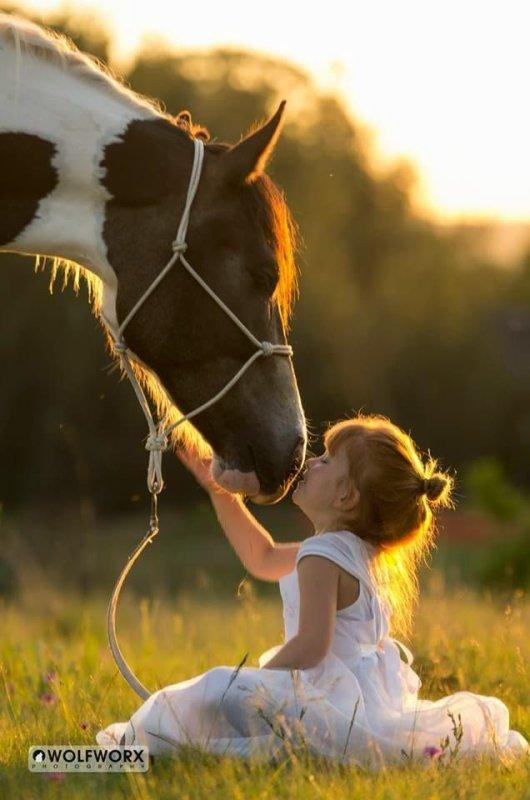 Noor mon beau cheval !