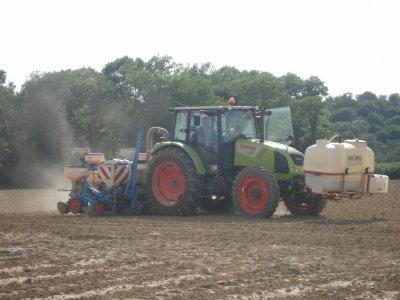 2ème chantier de semis de maïs semences en Mai 2011