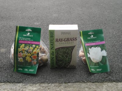 Semences : Ray-Grass & Fleurs ------------>Narcisse & Tulipes !!