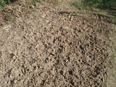 Ray-Grass---------------->préparation des terres & semis !!
