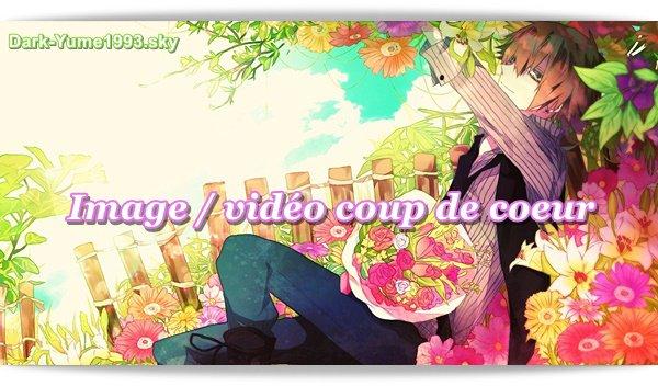 Image / vidéo coup de coeur