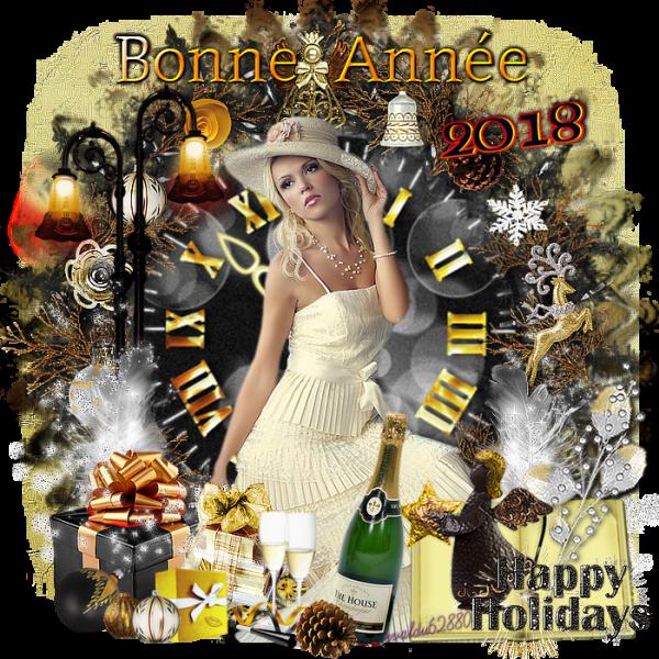 ***Bonne Année 2018 à tous et à toutes ***