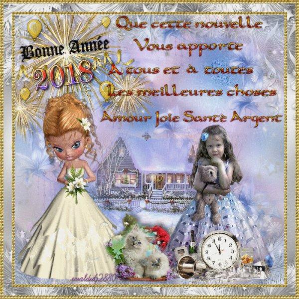 ***Bonne Année à tous et à toutes ****