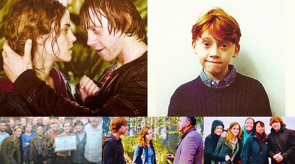J'ai fais goûter chaque bouteille par un elfe de maison, après ce qui est arrivé a votre pauvre ami RupertSlughorn; Harry Potter et le Prince de Sang-Mêlé