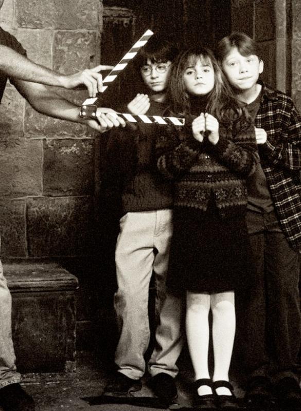 Non ! s'écria Ron. Prenez moi à sa place, gardez moi si vous voulez !  Bellatrix le frappa en plein visage. Le coup raisonna dans toute la pièce.