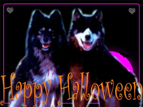 ★ Happy  Halloween ★