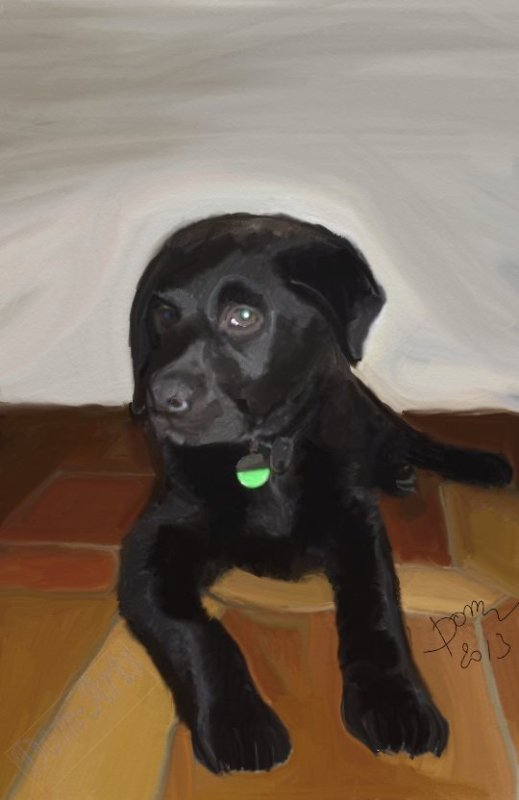 Peinture d'un labrador  Rex !!!!   Cadeau à Alexandra