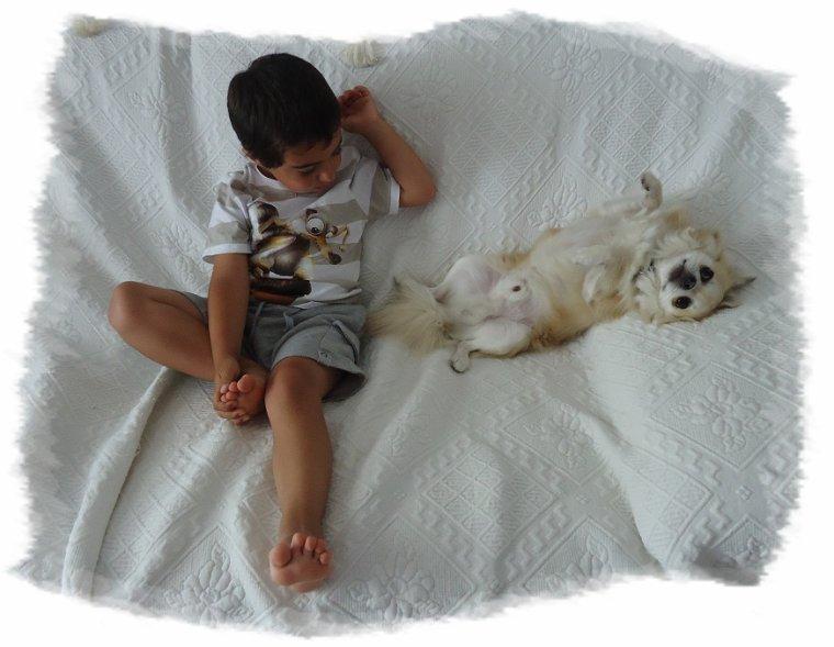 La cohabitation chien-enfant
