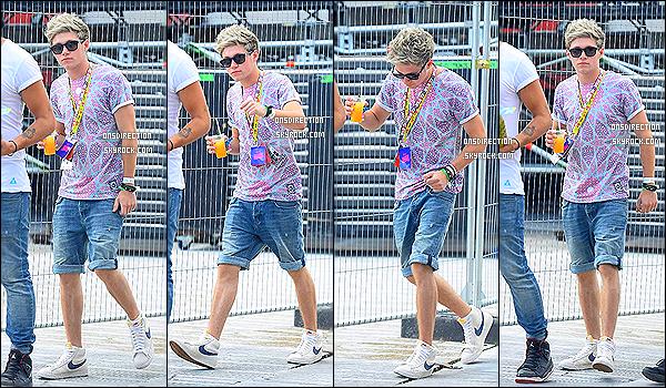 17/08/2013 : Niall a assisté au V Festival à Essex. Il était également accompagné du beau Conor Maynard.  Il était aussi avec Jade Thirlwall, des Little Mix, d'où cette courte vidéo postée par lui-même. On ne s'affole pas, c'est une simple amitié!